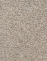 Avion Sandstone