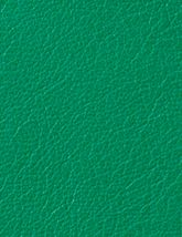 Berkshire_Kelly_Green_165x214