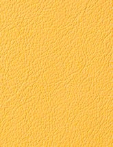 Berkshire_Mustard_165x214