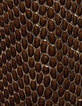 DiModa Cobra Mokka 165x214