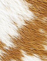 Capelli Natural Light Brown White 165x214