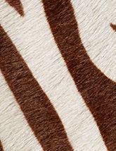 Capelli Specialty Mokka Zebra 165x214
