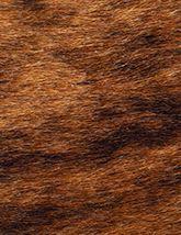 Capelli Natural Brindle 165x214