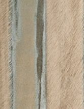 Capelli Specialty Pandora Spiga 80x80