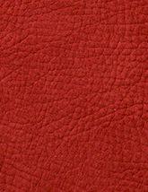 Kenya Brick Red 165x214
