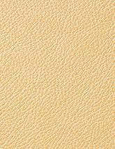 Pearlessence Oasis 165x214