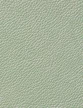 Pearlessence Spearmint 165x214