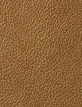 Pearlessence Bronze 165x214