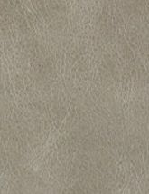 Resilience Moonstone 80x80