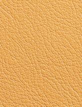 Sierra Desert 165x214