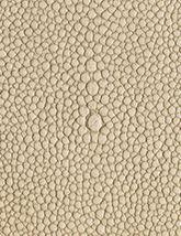 Shagarrett Limestone 165x214