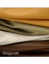 Shagarrett Sample Set